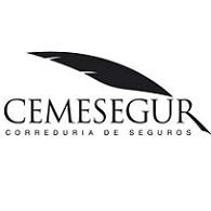 cemesegur.com